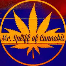 Mr. Spliff of Cannabis