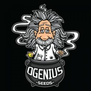 Ogenius Seeds
